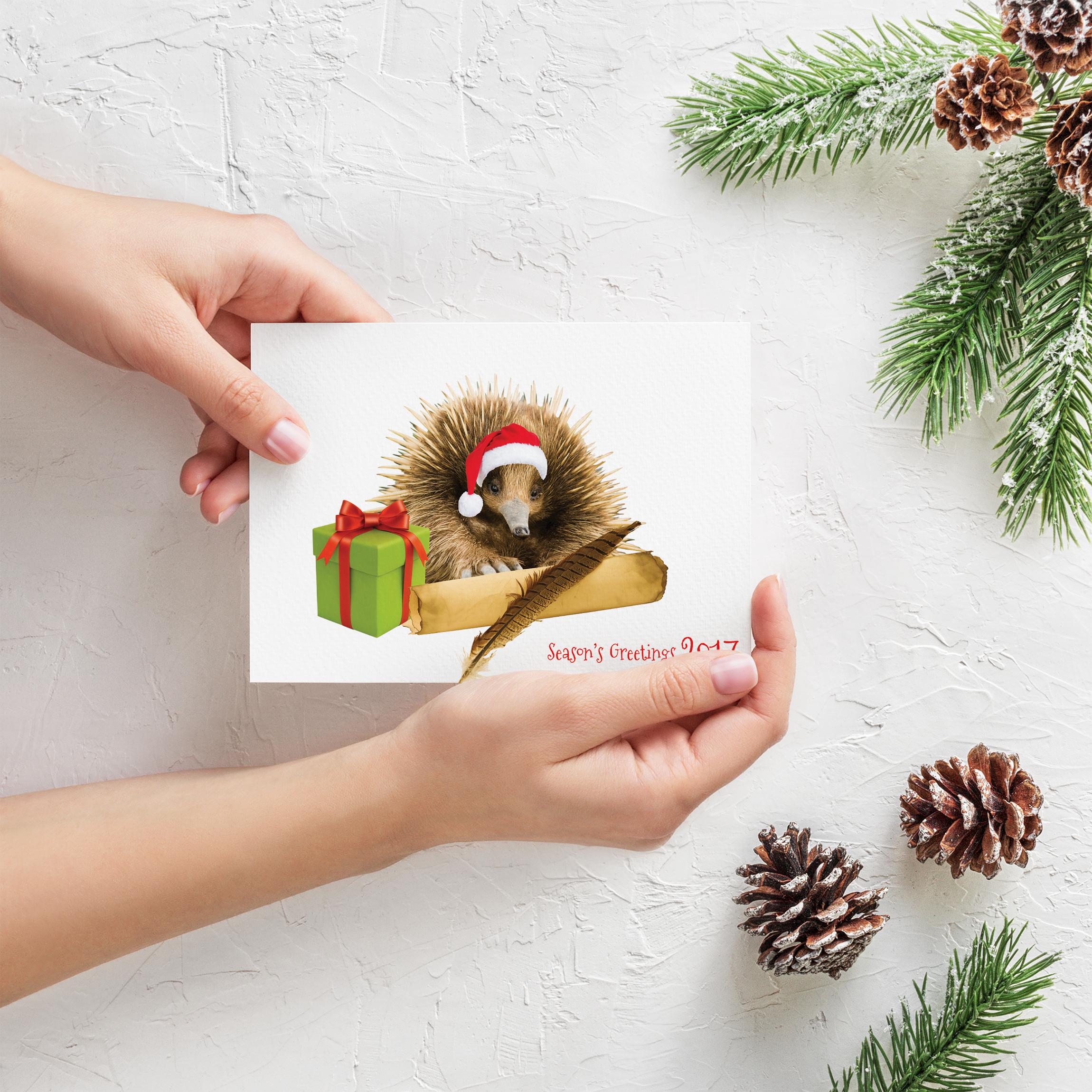 APAP Events Event Management and Graphic Design Rockhampton Bidgerdii Christmas Card 2017
