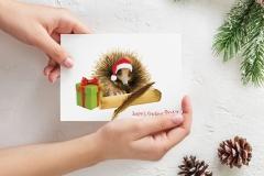 Bidgerdii-Christmas-Card